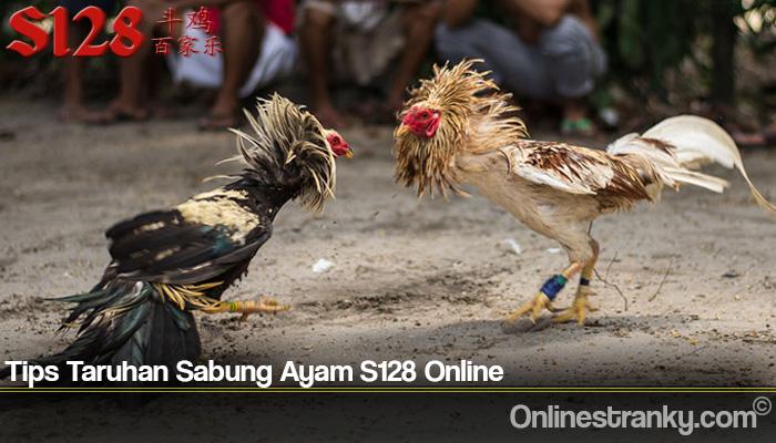 Tips Taruhan Sabung Ayam S128 Online